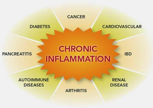Surprising Foods That Cause Inflammation and Others That Prevent It