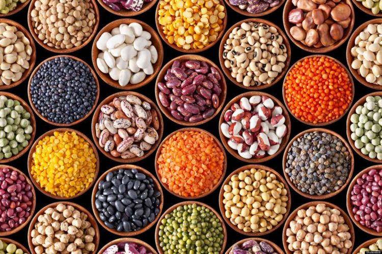The Many Benefits of Beans…and Some Risks